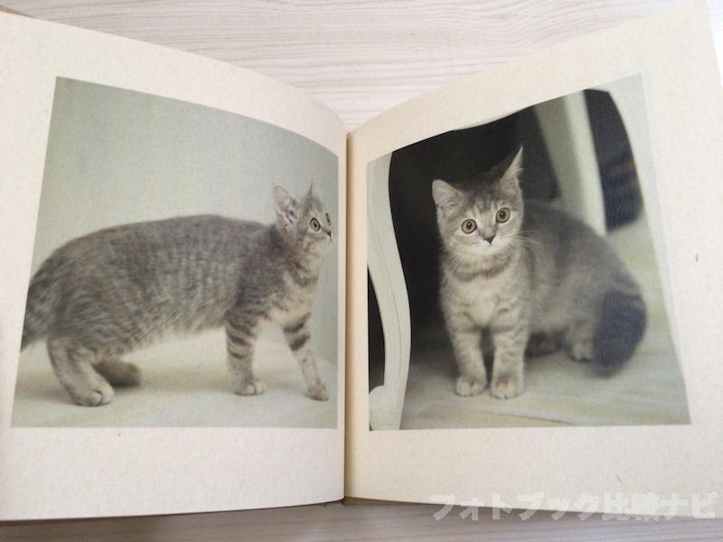 マイブックライフ「book」レビュー